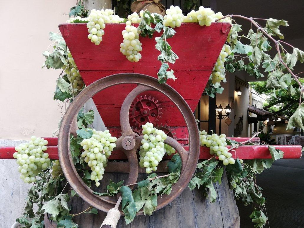 Festa dell'uva e dei vini di Velletri 2019